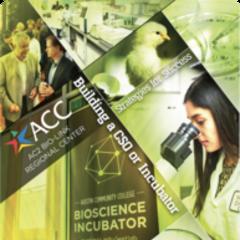 Cover ACC incubator CSO report